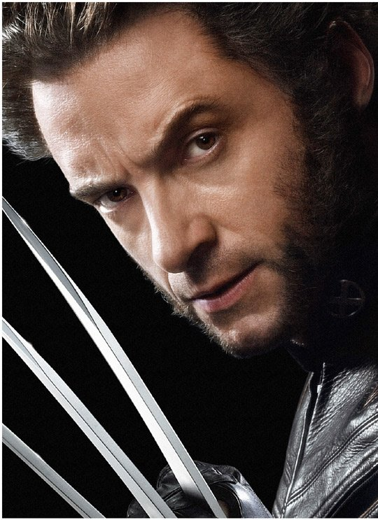 http://cjlagombra.files.wordpress.com/2009/04/wolverine600bb5sl61.jpg